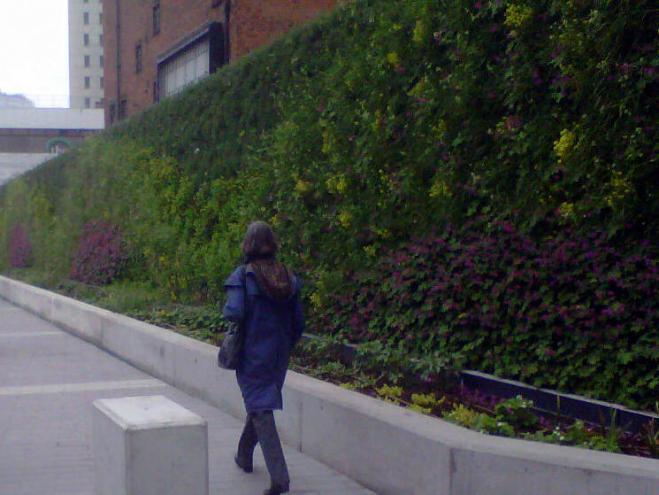 New Street Green Wall
