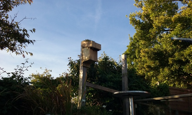 Green roofed bird box installed in a garden