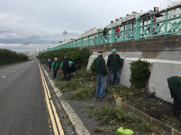 Unlocking care for the Madeira Drive Green Wall