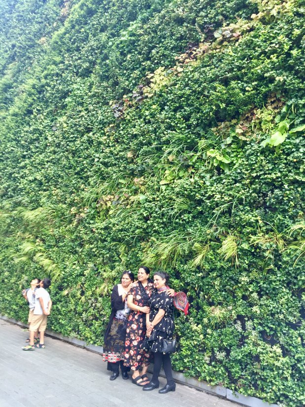 Green walls – whybother?