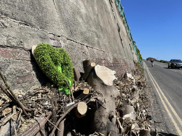 Madeira Drive green wall update and what needs to be donenext